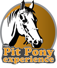 Pit Pony Experience